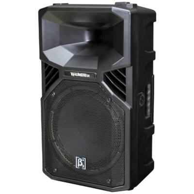 Elder Audio T-12a aktív hangfal profi felhasználásra